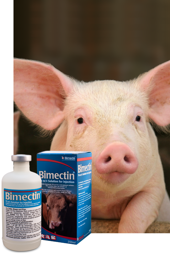 bimectin injection - pig