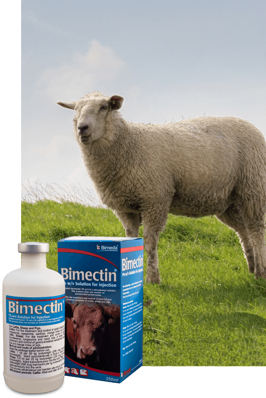 bm-inj-side-sheep